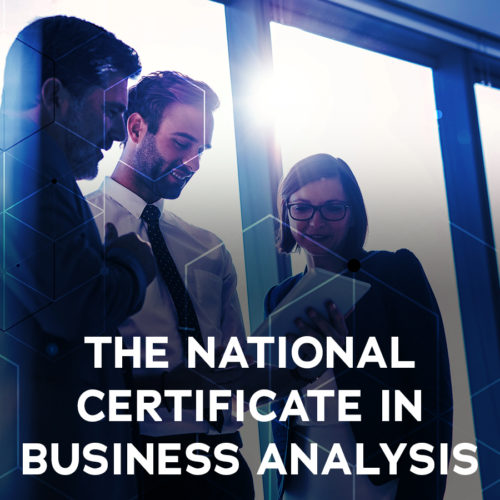 The National Certificate in Business Analysis