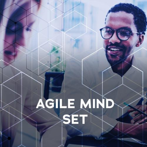 Agile Mind Set